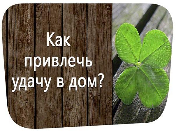 Слова, которые притягивают удачу