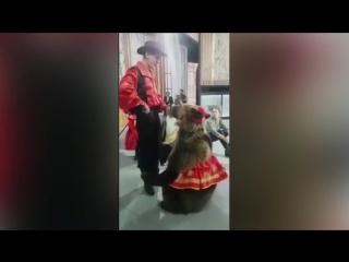 Медведь напал на женщину во время съемок передачи