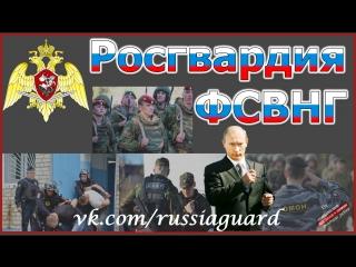 Виктор Золотов вручил личный штандарт командующему Северо-Западным округом