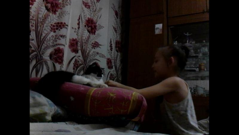 Браслет из резинок и кот