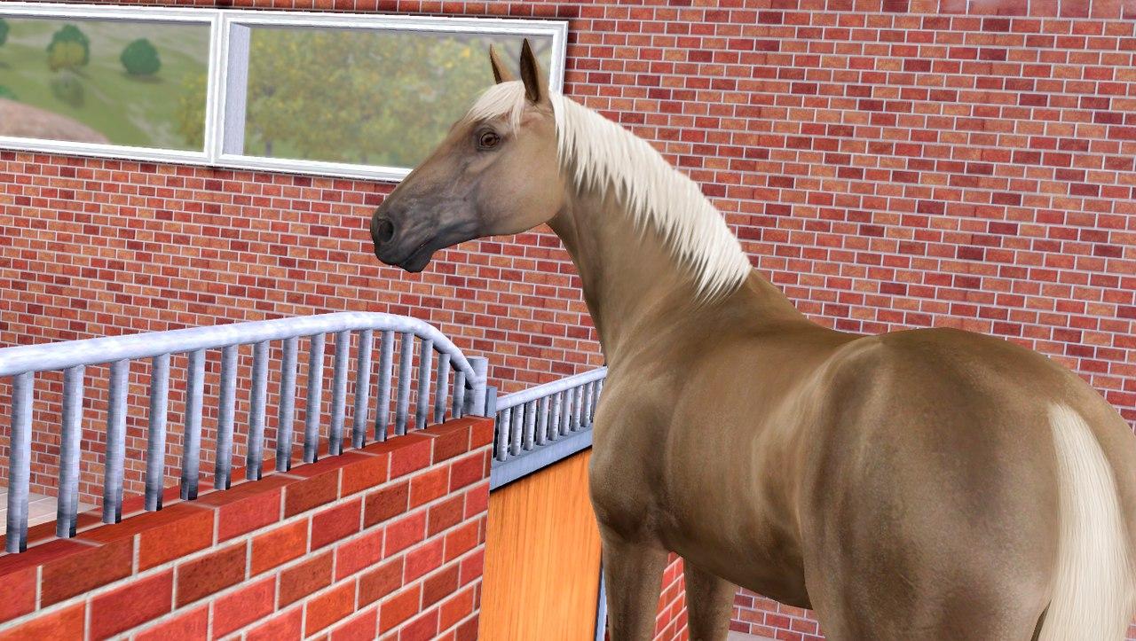 Регистрация лошадей в RHF 2 - Страница 3 ShyisJ9W8EY