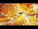 Лучшие для души М Легран Осенняя грусть M Legrand Autumn sadness Saxophone ЛучшеенаЮТУБе