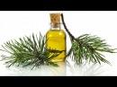 Пихтовое масло одно из средств очищающее ЛИМФУ и КРОВЬ