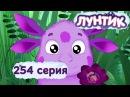 Лунтик и его друзья - 254 серия. Игра в желания