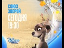 Союз зверей на Канале Disney