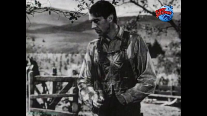 «Голливудская коллекция: Гэри Купер. Лицо настоящего героя» (Документальный, киноиндустрия, 1997)