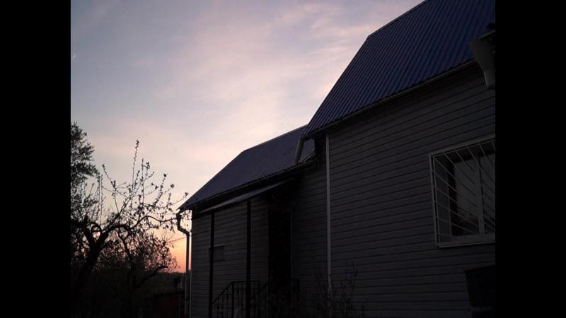 Вечерняя мошкара на даче - рой мошек копошится, кружится, вертится