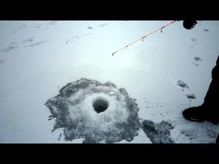 Ловля окуней зимой со льда на балансиры. Береславка.