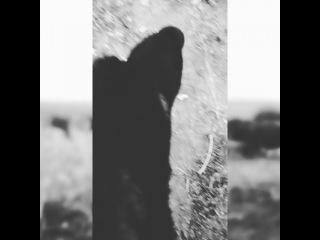 irka__zhovtaya video