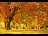 Strawbs - Autumn