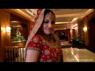 Pakistani Wedding Highlights