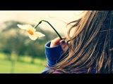Inkfish - For Life (Blood Groove &amp Kikis Remix) HD