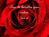 Rosas---La Oreja de Van Gogh (letra)