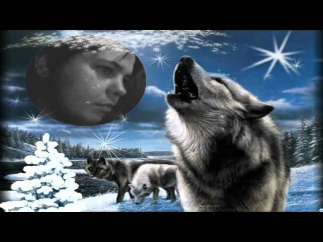 Одинокая Волчица исп Александр Добронравов