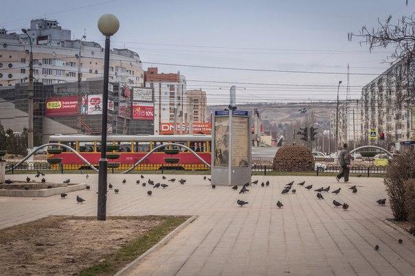 Красота по-Красноармейский.  Фото: Александр Козлов.