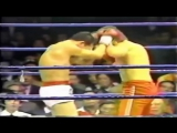 Benny The Jet Urquidez Fighting Career Highlights HD