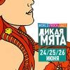 Тула едет на фестиваль Дикая Мята!