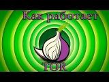 Что такое Tor, как он работает и зачем нужен.