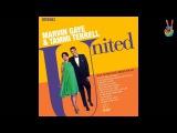 Marvin Gaye &amp Tammi Terrell - 04 - Something Stupid (by EarpJohn)