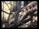 Дикая любовь (1993) 1-ая серия