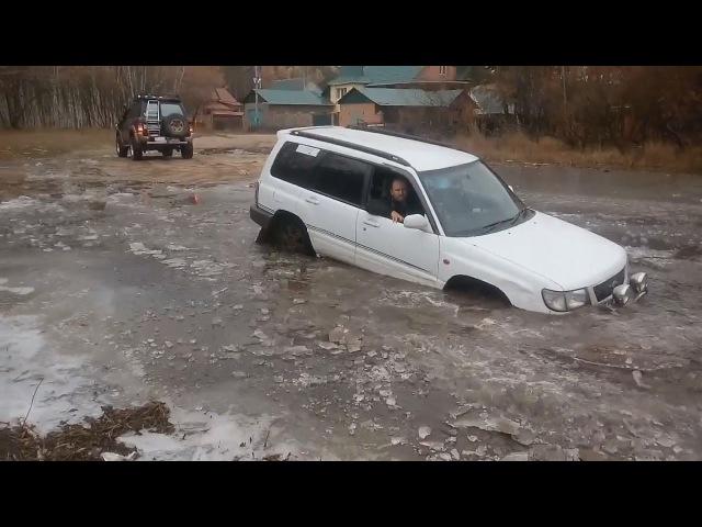 Как утопить Subaru Forester. Водитель в шоке