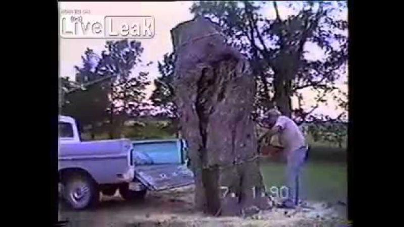 Профи лесоруб и бессердечная гравитация