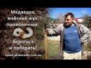 Медведка, майский жук, проволочник как бороться и победить