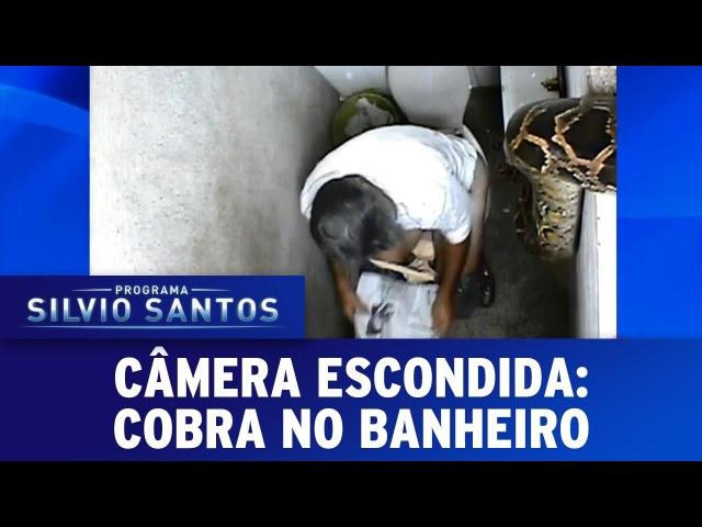 Câmera Escondida 18 12 16 Cobra no Banheiro