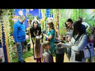Сад Живых Бабочек Миндо Хабаровск