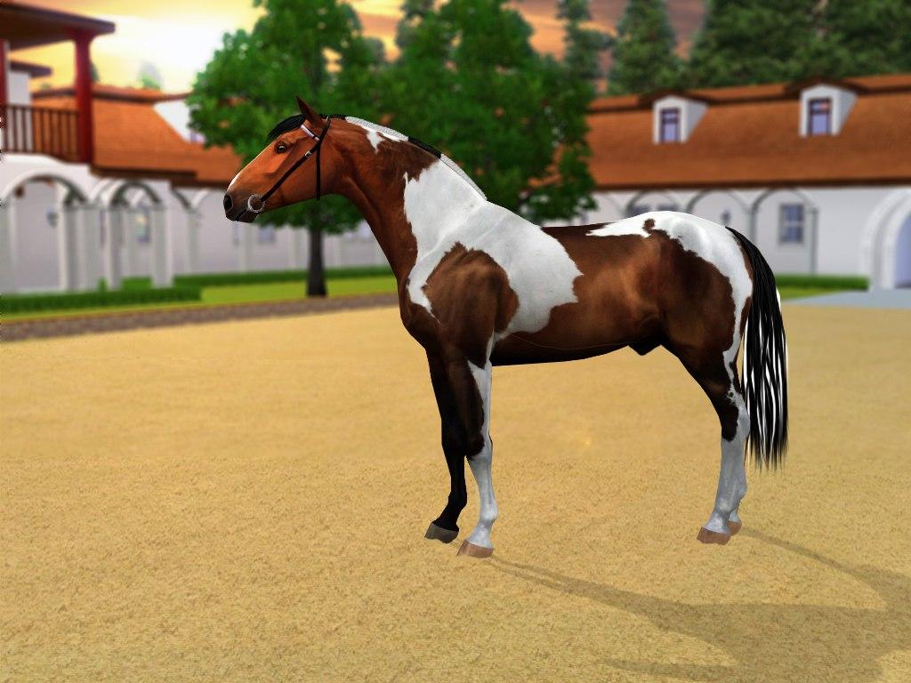 Регистрация лошадей в RHF 2 - Страница 3 OFTLzB-y-yA