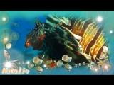 Вечность. Морские глубины. Музыка для релаксации