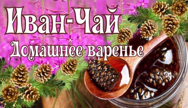 Фото №438340110 со страницы Ивана-Чая Чайнаи-Деревни