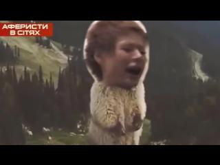 Аферисты в сетях .Выпуск 15 - Сезон 2