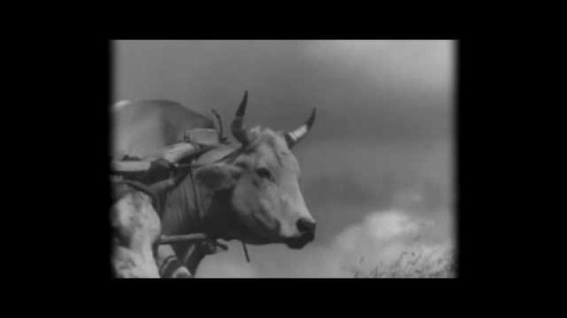 Назарбаев террор машин - Жөк көру адамдар (Официальное видео)