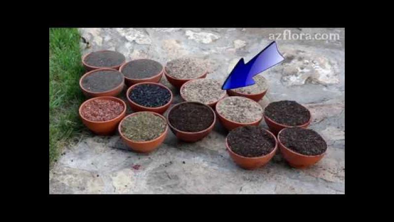 Почвенная смесь для кактусов и других суккулентов