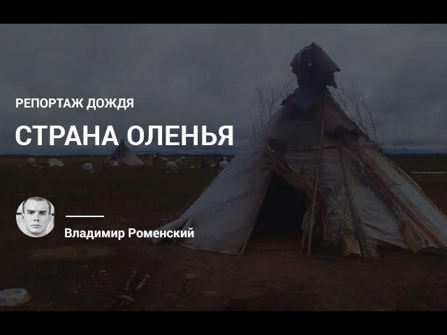 Репортаж Роменского о том, как спасается тундра после вспышки сибирской язвы