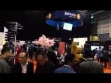 Репортаж с международной выставки iFX EXPO Asia 2017