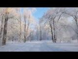 Зима в Красноярске. Остров Отдыха.