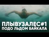 ПЛЫВУЗАЛЕС1 | Подо льдом Байкала | Beneath the ice of Lake Baikal