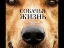 собачья жизнь фильм 2017