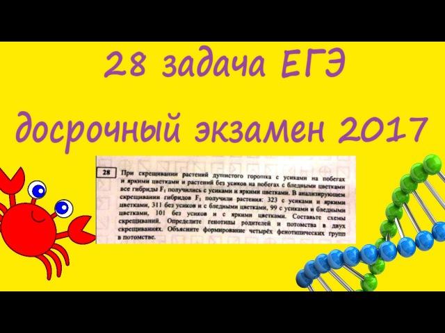 28 генетическая задача ЕГЭ на сцепленное наследование. Досрочный экзамен по биол...