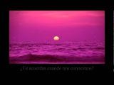 Sea of love - Robert Plant (subtitulada al espa