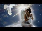 Белая Птица Любовь, Песни о Любви к Женщине, Штар  #музыка