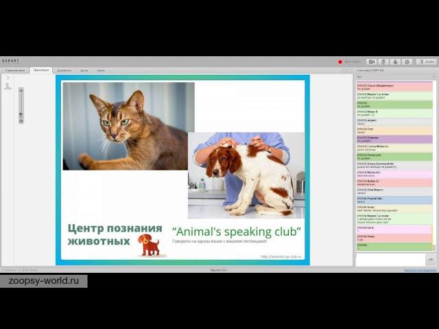 Виталия Кононова О чем говорят животные Язык собак