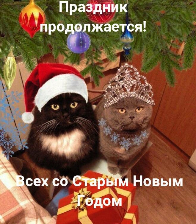 https://cs7066.vk.me/c604721/v604721307/2f90c/kLZ37i-F1CY.jpg