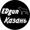 ООО Эдган EDgun пневматика ремонт сервис Казань