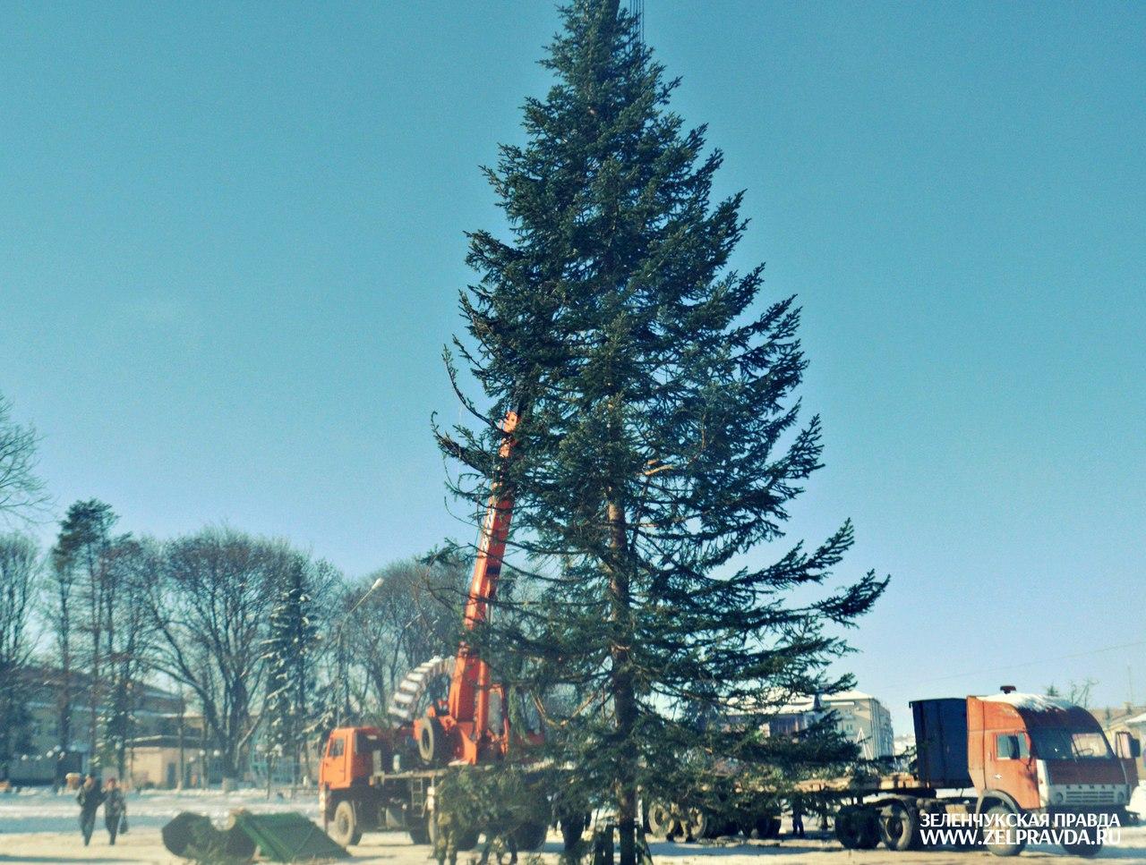 В станице Зеленчукской установили главную елку Зеленчукского района