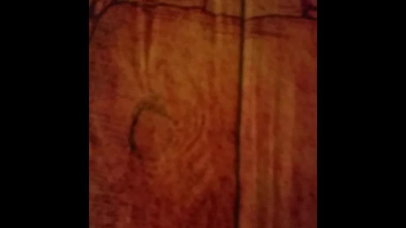 Арт-панно из досок Витрувианский Человек