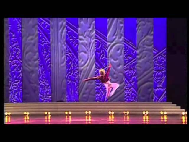 Maris Liepa Gala Don Quixote
