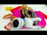 Видео для детей: кукла Барби и машинки спасают Макса из мультика тайная жизнь домашних животных